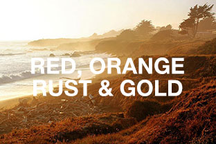 Reds, Orange, Rust & Gold Rugs